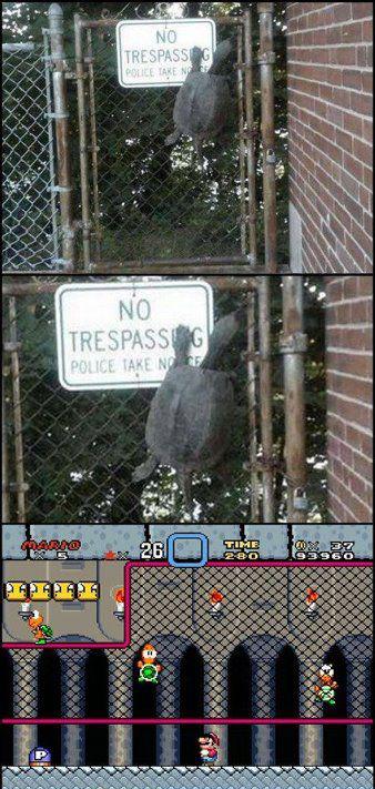 Koopa Troopa Attack