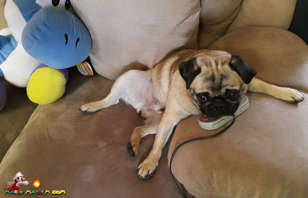 otis_pug_playing_super_nintendo